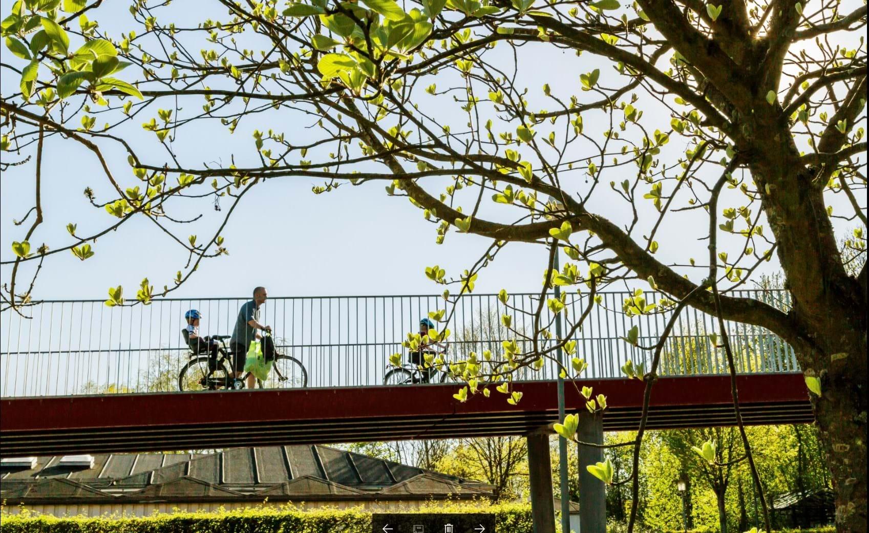 På Cykel I Aarhus